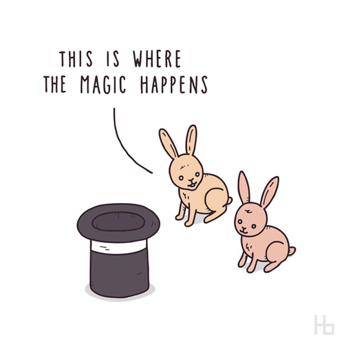 magic-happens-rabbitts