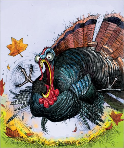 angry_turkey